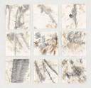 """""""Regenwald"""", Naturfarbe und Bleistift auf Papier, 60 x 60 cm, 2017"""