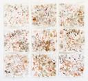 """SelvaAmazonica"", Naturfarbe auf Papier, 60 x 60 cm, 2018"